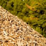 Le Biomasse Arredamentonline